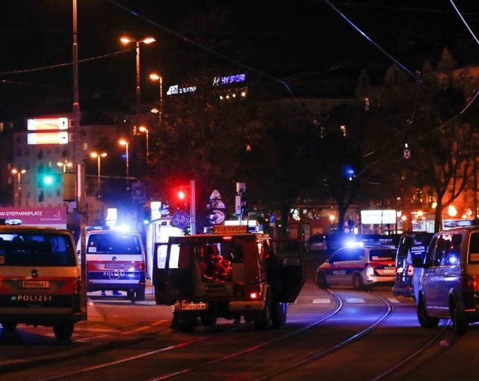 Vienna shootings